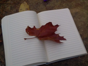 Things I love...A blank page, Nature, and the time to fill the two with my inner ramblings!