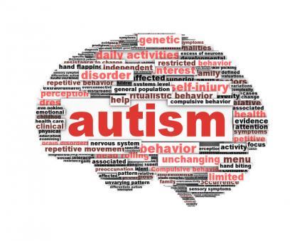 156201-425x339-autism-brain