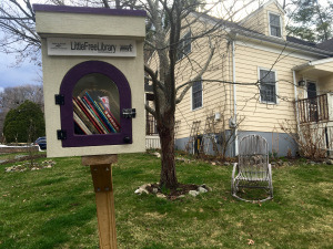 Tammylittle free library
