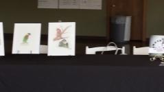 illustrations at signing